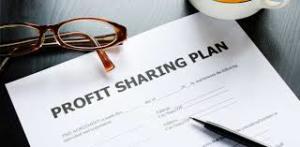 Profit Sharing Solo 401 k